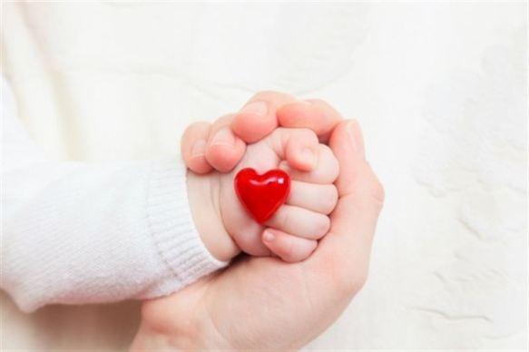 Coração fetal